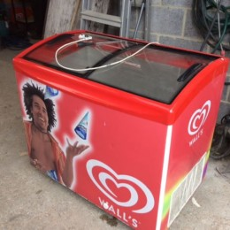 Ice cream conservertor