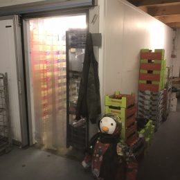 Aprox 6 mtr x 3 mtr 